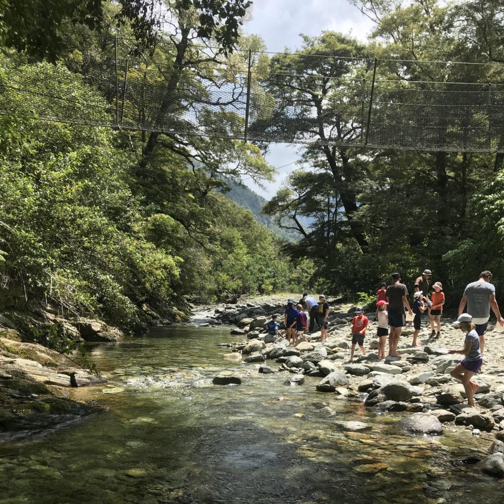 Pine Valley Stream