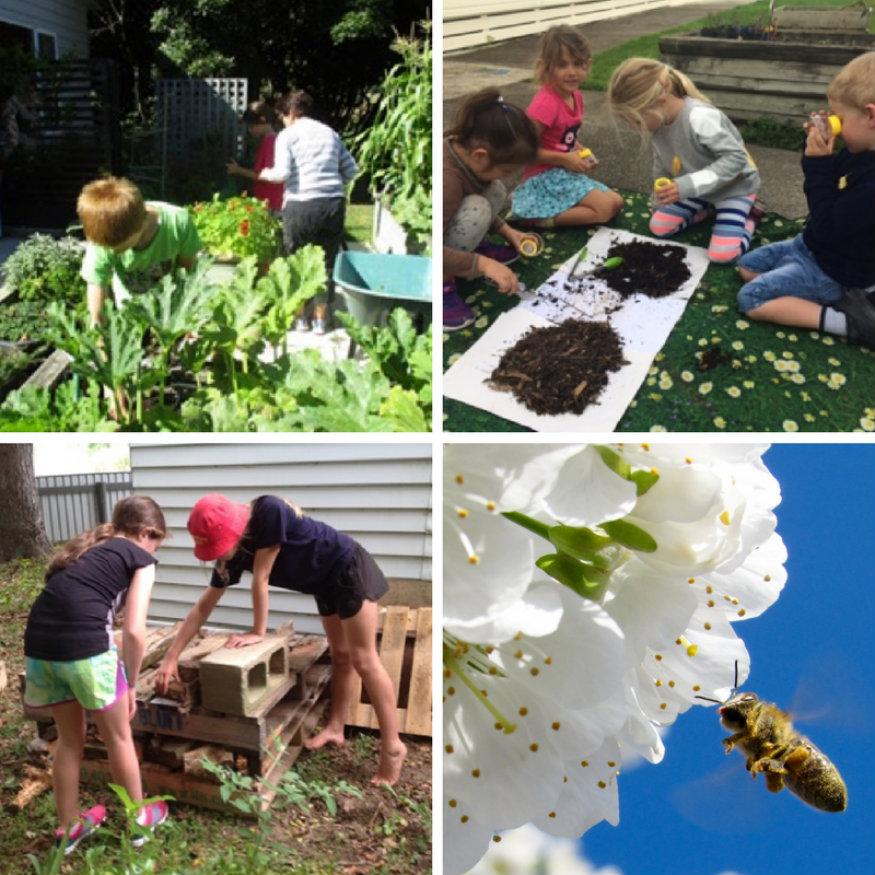 Kids' Edible Gardens