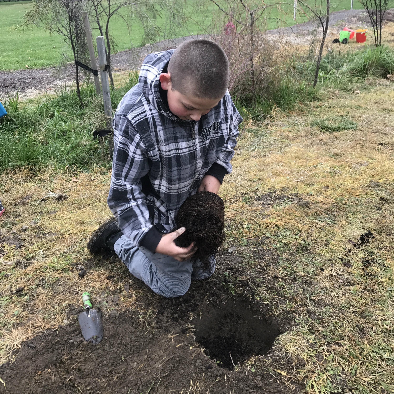 Grovetown School planting
