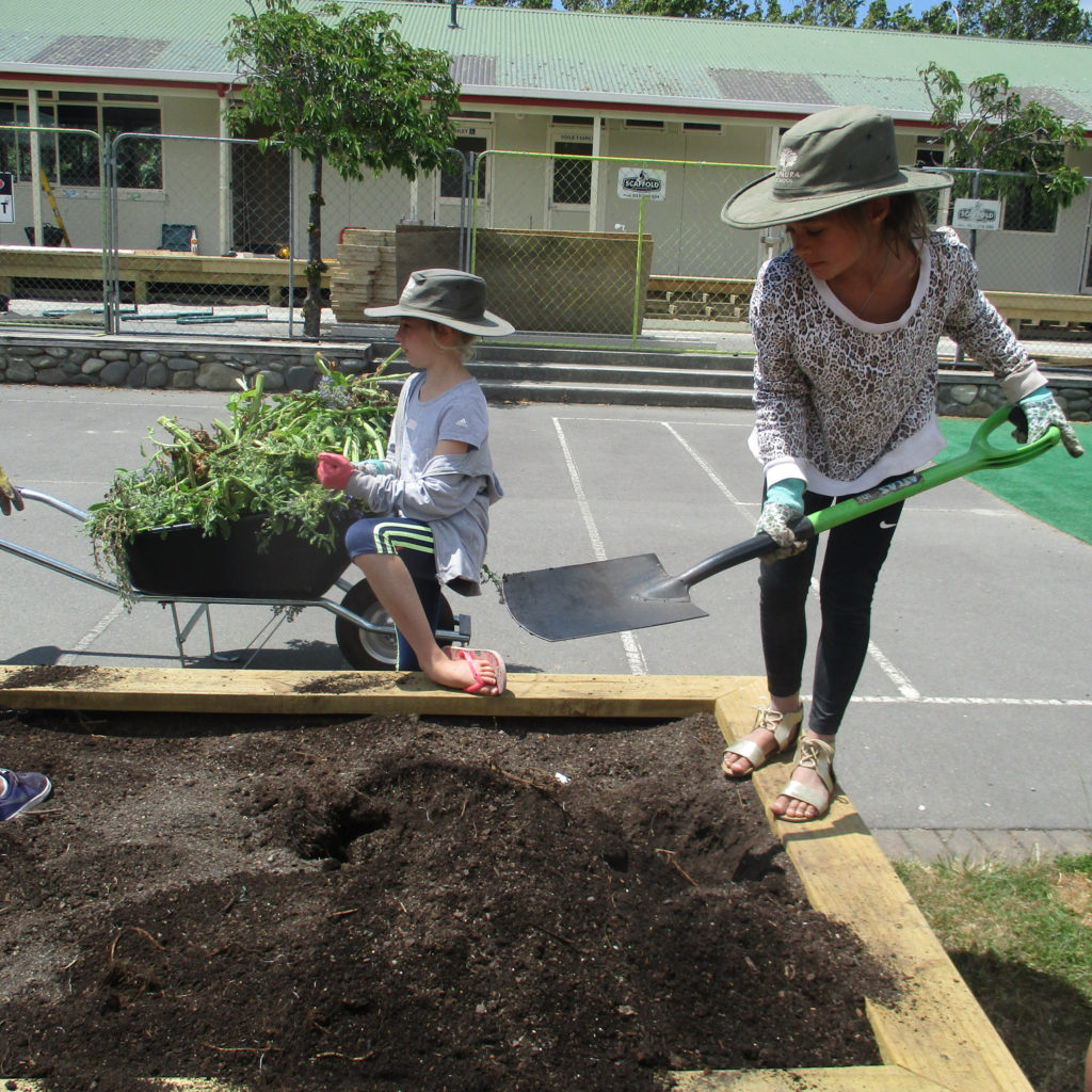 New garden at Rapaura School