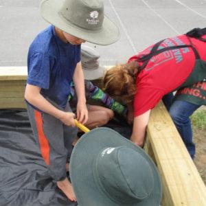 Lining the vege garden