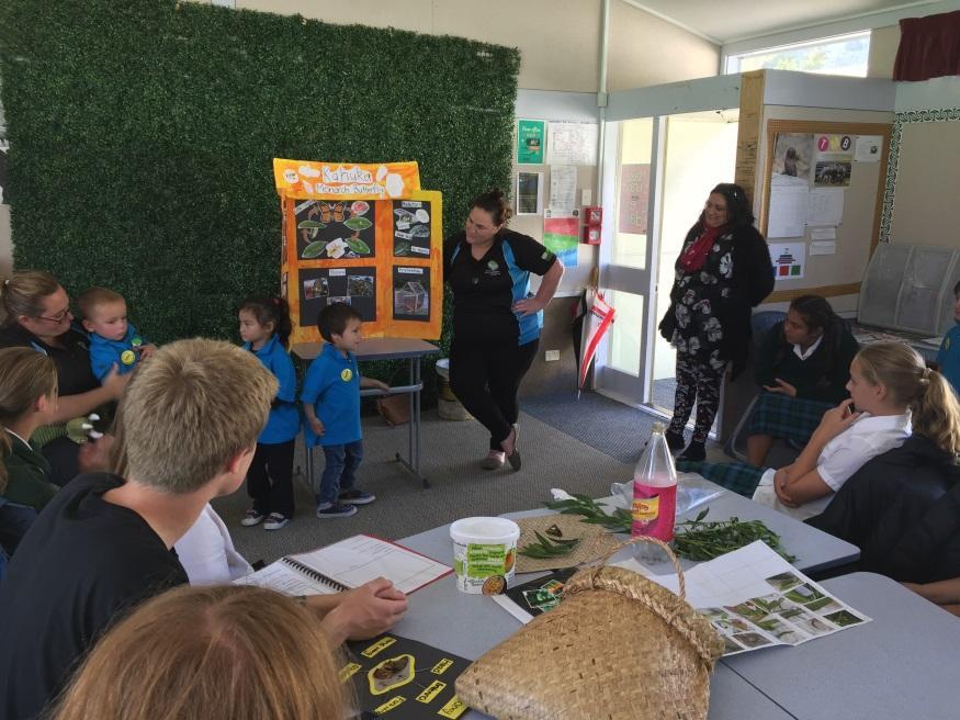 Picton Kindergarten share love of monarch butterflies
