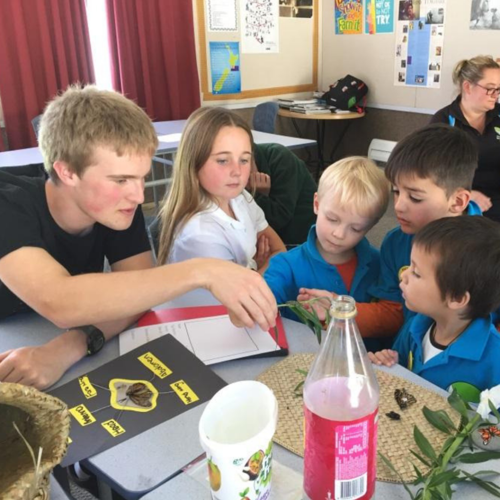 Tamariki share their love of monarchs