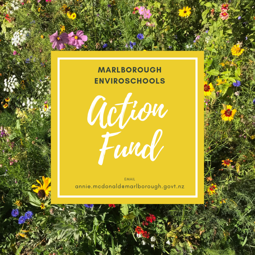 Enviroschools Action Fund