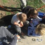 Canvastown School exploring biodiversity