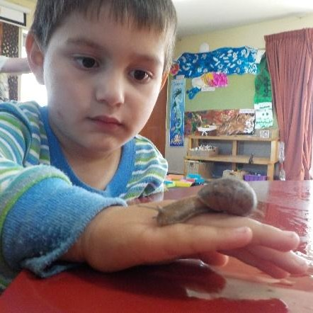 snails nga ngata
